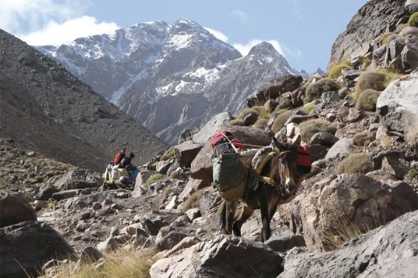 Mont Toubkal ascension 02