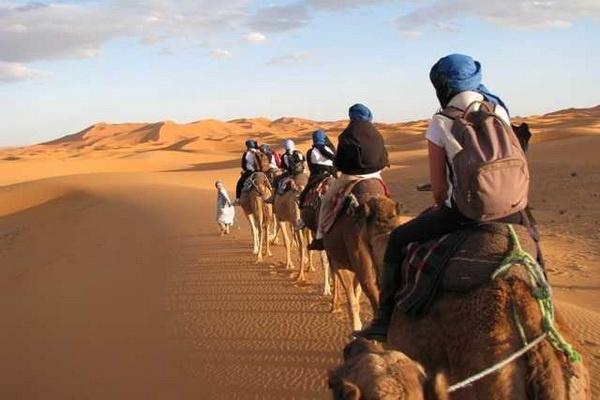 Découvrez les dunes du Merzouga 04