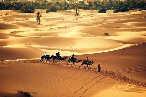 8 Jours de randonnée dans le désert 04
