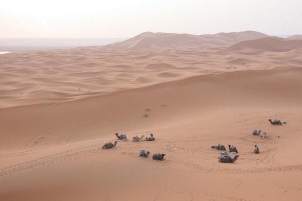 Reveillon du nouvel an dans le desert 03