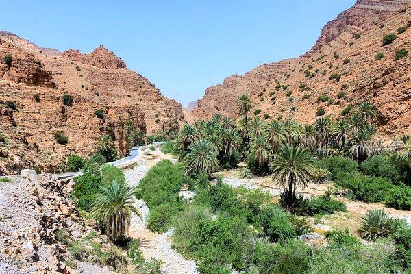 Voyage Handicap Maroc 01
