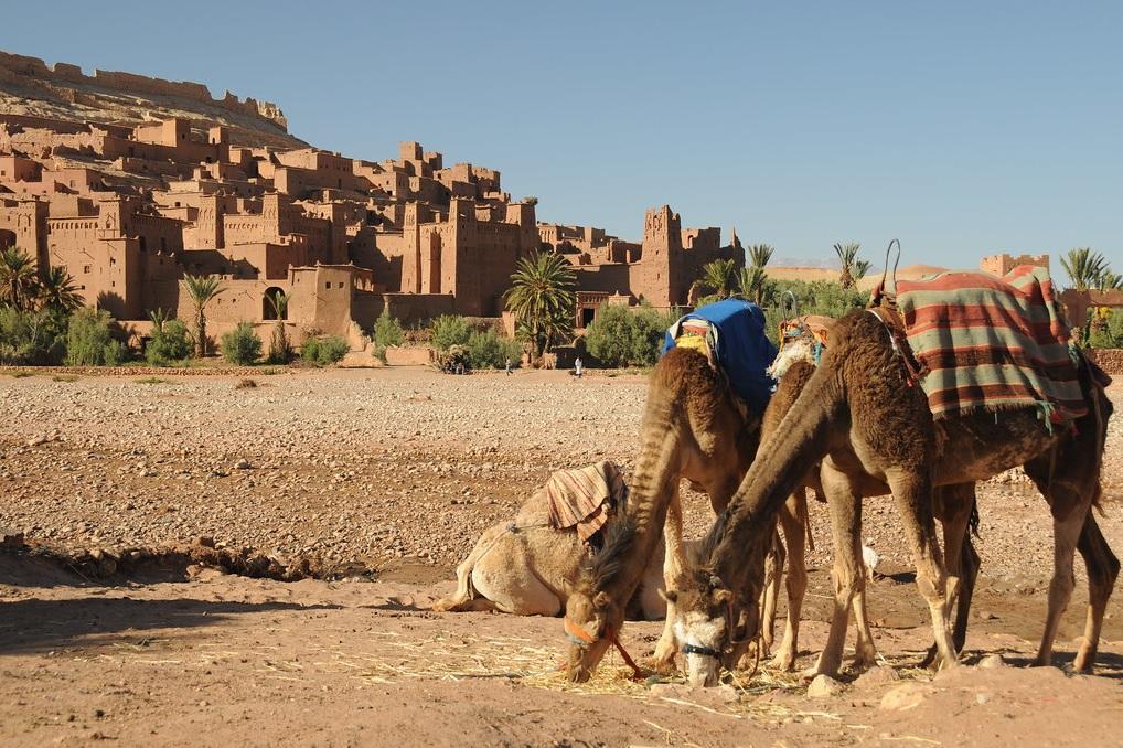 Excursions au depart de Marrakech