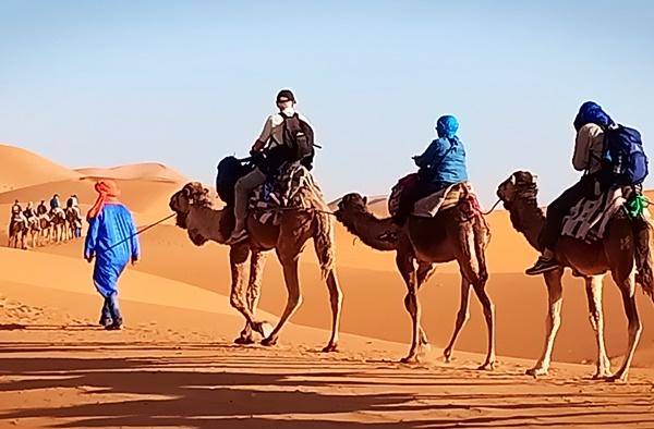 le desert du Sahara   Voyage Maroc sur mesure   Voyage au Maroc   Vacances au Maroc sur mesure   Trek au Maroc   circuit de velo au maroc   randonnée et voyage   Trekking   VTT   Randonnées & Treks au Maroc montagne désert