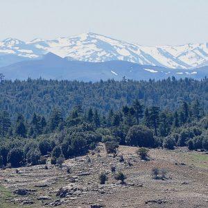Moyen Atlas Montagnes