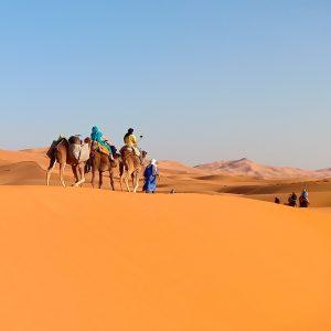 Sahara Desert Tour from Marrakech