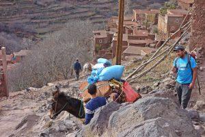 Trekking in Morocco tour