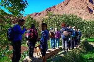 Trekking in Tinghir valley