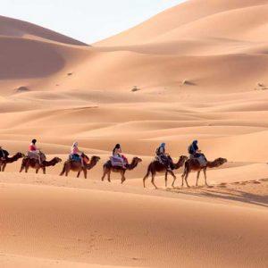 Le Sud-Marocain, ses Oasis, Dunes et Désert 04