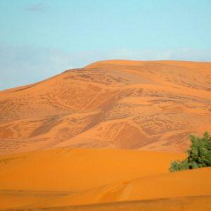 8 Jours de randonnée dans le désert 01