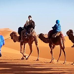 le desert du Sahara