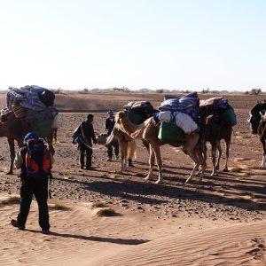 le desert marocain 3