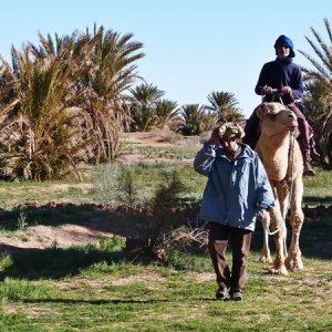 le desert marocain d