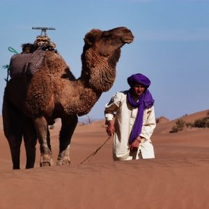 le desert marocain2